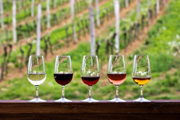 wine glasses in front of vineyard