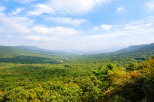 hawk mountain sanctuary